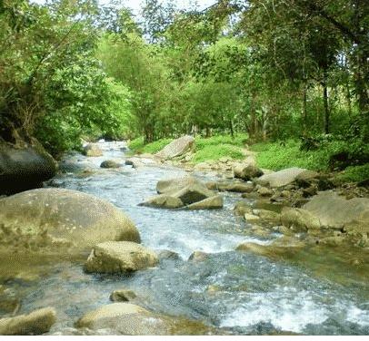 Pengertian Sungai dan Jenisnya Menurut Para Ahli
